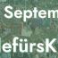 20_09_2019_AllesFürsKlima